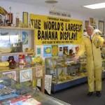 Altadena Banana club