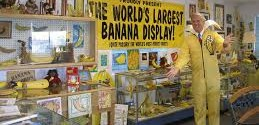 Banana club and museum, Altadena
