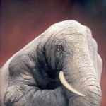 Painted Hands - Elephant