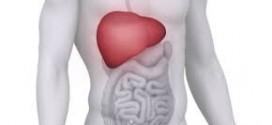 Liver care – Liver health