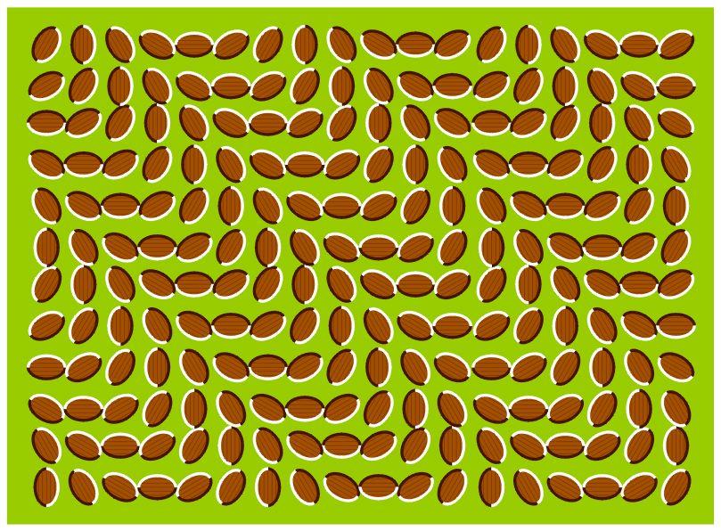 optical eye illusions