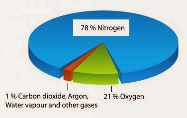 nitrogen facts