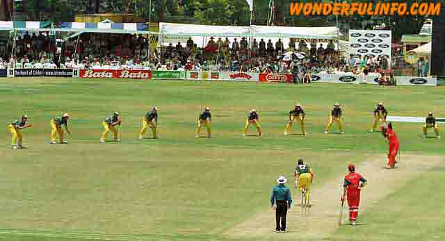 funny cricket 9 slips